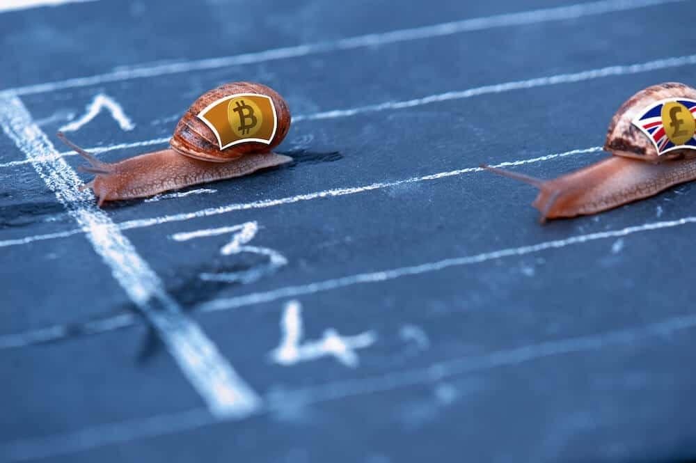 Bitcoin vs GBP Snail Race
